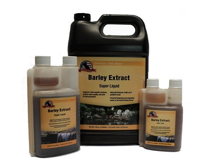 how to make barley straw extract