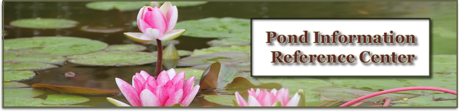 pond articles page banner