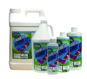 AlgaWay 5.4 Algaecide Algae Control 2.5 Gallon Treats 113,560 Gallons - EPA Registered