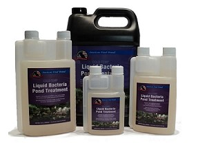 American Pond Cold Temp Liquid Bacteria Water Treatment 16oz Treats 16000 Gallons